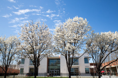 Blooming trees near the Jean Hofmann Center for Innovation